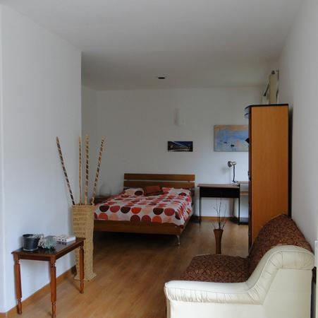Lovely Studio In San Angel, southern Mexico City - Image 1 - Mexico City - rentals