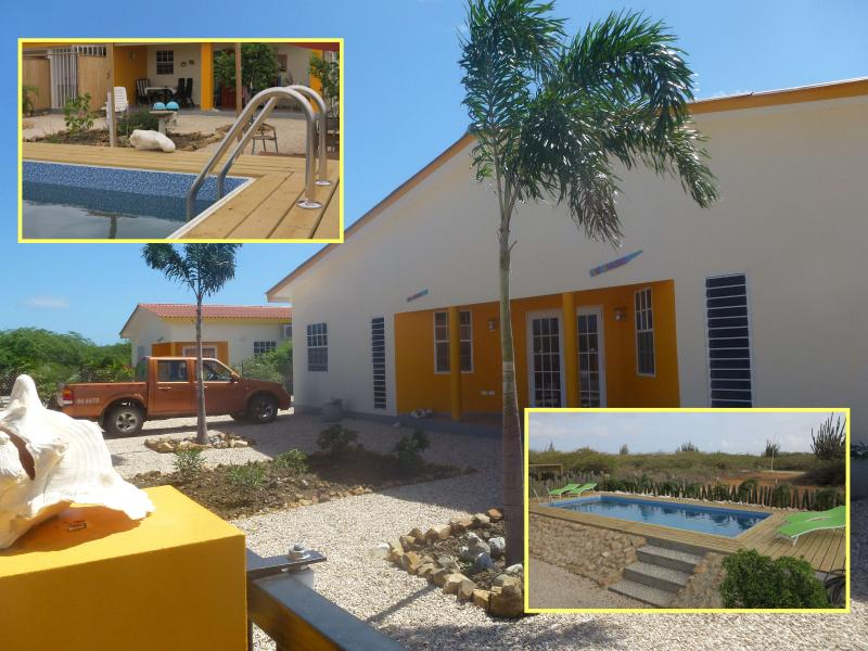 Sunny and colorful apartment with pool and large garden - Image 1 - Kralendijk - rentals