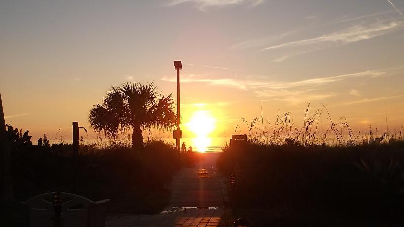 Midnight Cove's private beach at sunset - Remodeled, Private Beach w/Lounges and Umbrellas! - Siesta Key - rentals