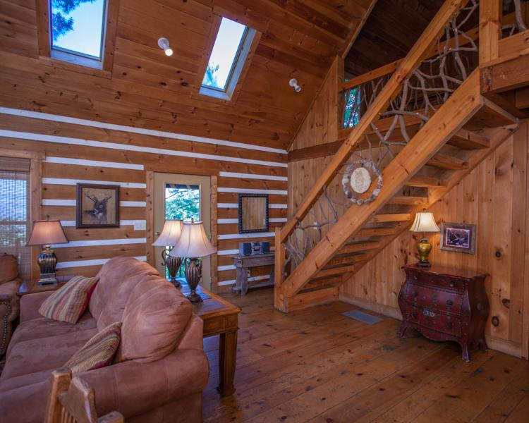 Amazing Staircase - Raccoon Lodge - Amazing View! New Pictures! - Ellijay - rentals