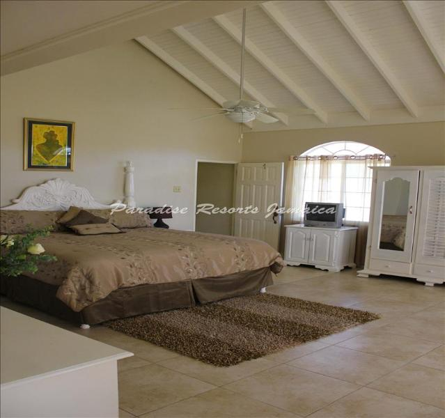 PARADISE RGH - 84020 - PEACEFUL | FAMILY | GUESTHOUSE | HONEYMOON SUITE WITH POOL - FALMOUTH - Image 1 - Falmouth - rentals