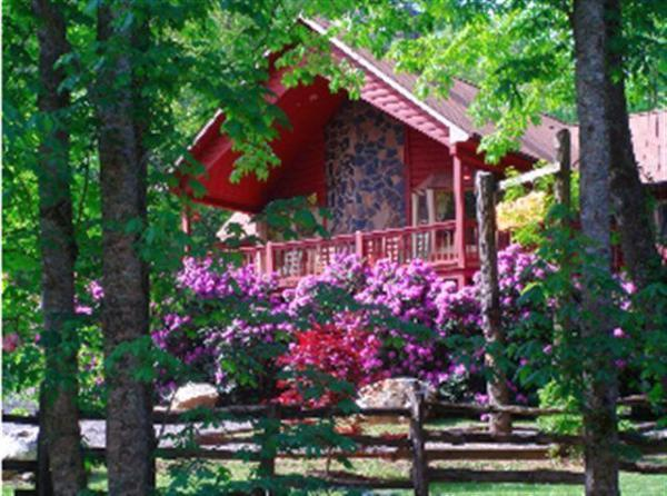 Front of Home - Vacation Log Home-River near Boone,North Carolina - Boone - rentals