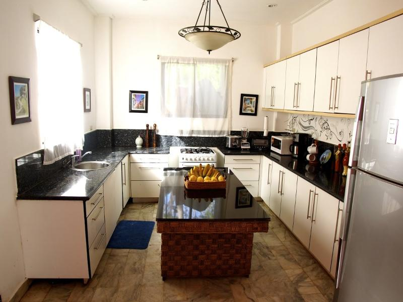 large Chefs Kitchen for entertaining  - SKY VILLA BORACAY - Boracay - rentals