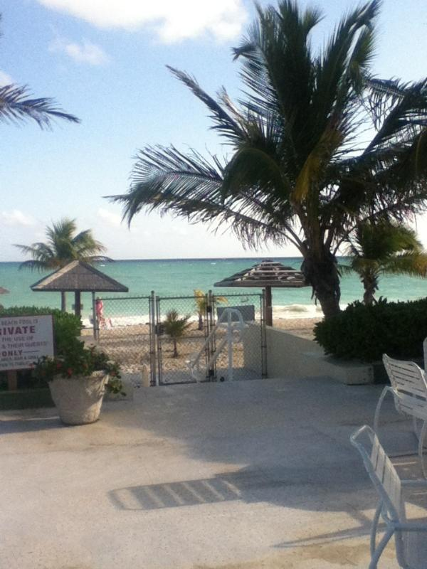 Steps to beautiful beach - Coral Beach Studio Condo $105 a night. - Freeport - rentals