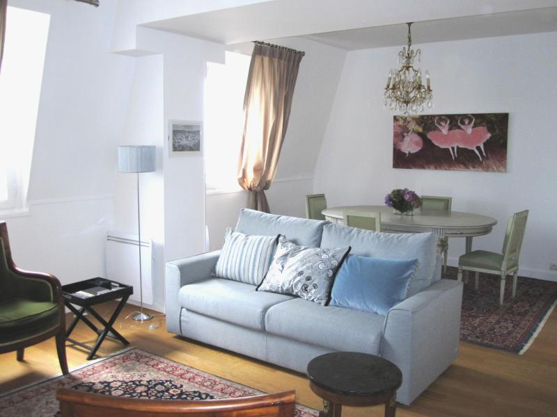 A spacious, luxuriously furnished apartment to return to after an exciting day in Paris - Beautiful Pont Neuf, Seine, Views - 1st Arrondissement Louvre - rentals