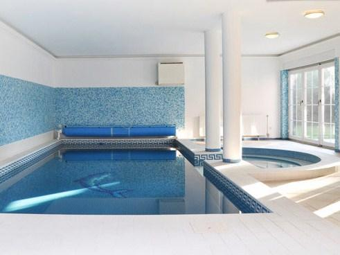 swimming pool - Villa Olivia with indoor pool, jacuzzi and sauna - Budapest - rentals