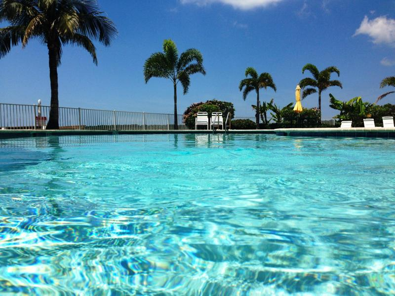 By the pool - The best guest rated condos at Madeira Beach area! - Madeira Beach - rentals