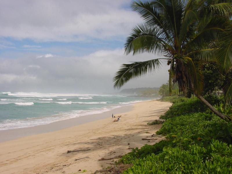 Beachfront House in North shore - Haleiwa, Hawaii - Image 1 - North Shore - rentals