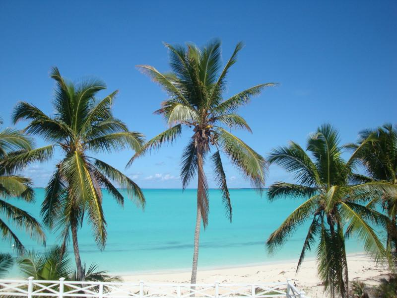 The Beach at Driftwood Apartments - 2 Luxury Apartments for 2-4 on Exuma's Best Beach! - The Exumas - rentals