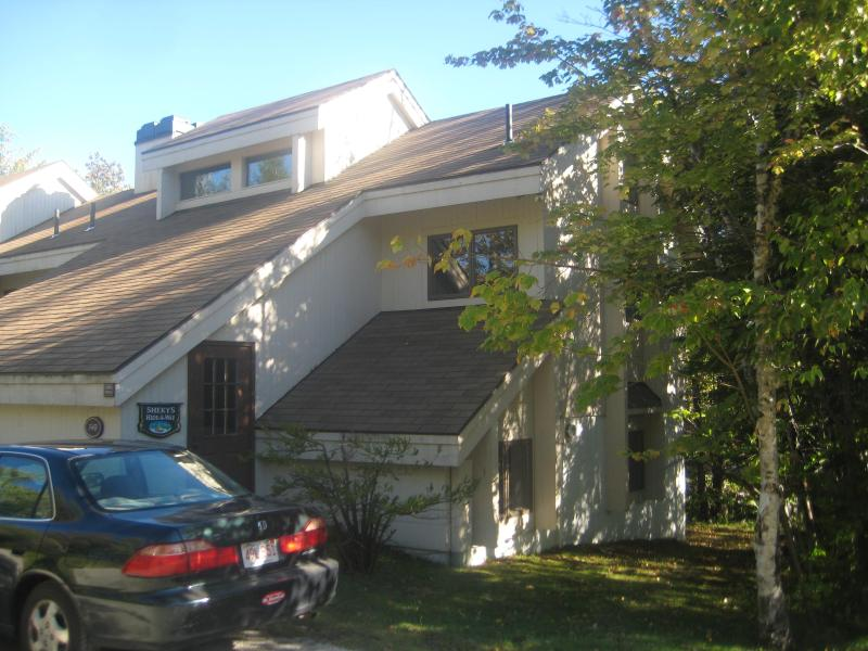 3 BR cozy condo in beautiful Bromley Village, VT - Image 1 - Stratton and Bromley Ski Areas - rentals