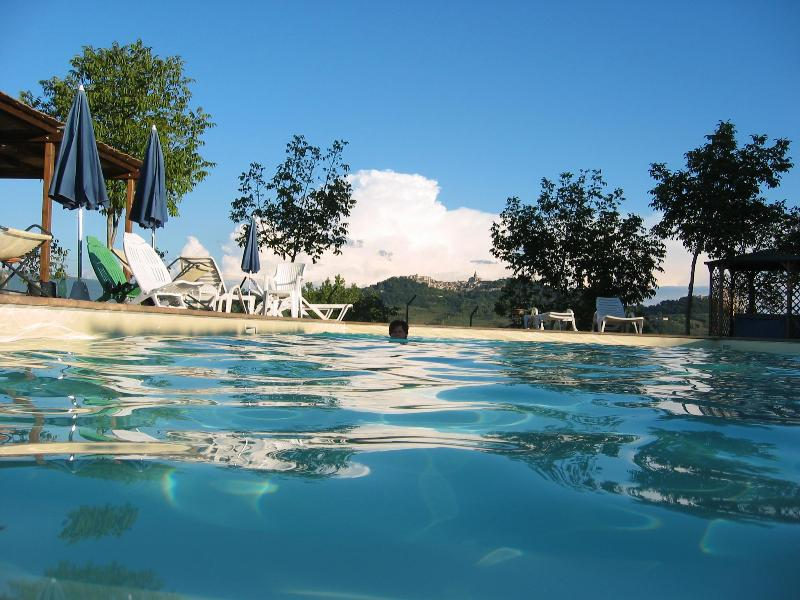 the pool - Bellissima villa with 1 double bedroom apartment - Todi - rentals