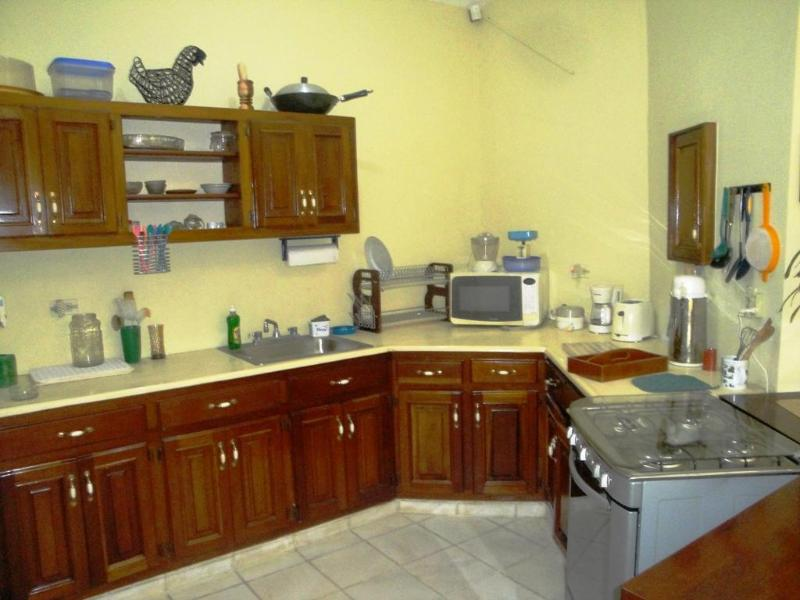 Fully equipped open Kitchen, cabinets from Mahogany wood - Bird Watching Vacation and So Much More! - Sosua - rentals