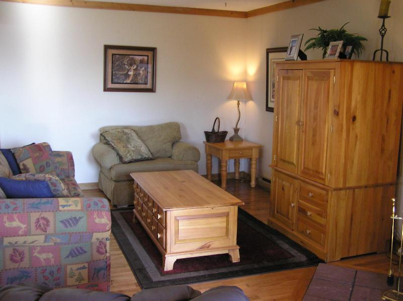 Comfy living room with fireplace and sleeper sofa - Cozy, Warm Mountaintop Condo w/ Breathtaking Views - Snowshoe - rentals