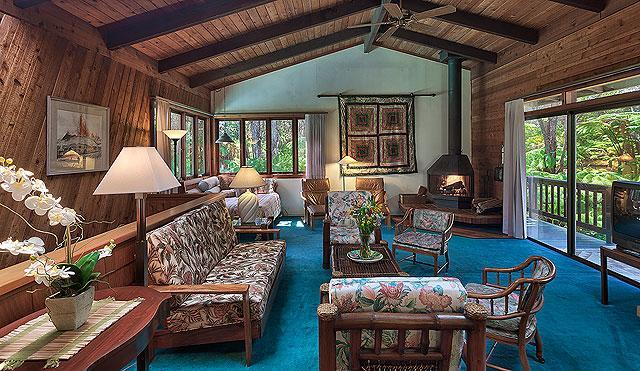 Apapane Lodge-Be Surrounded by the Rain Forest! - Image 1 - Volcano - rentals