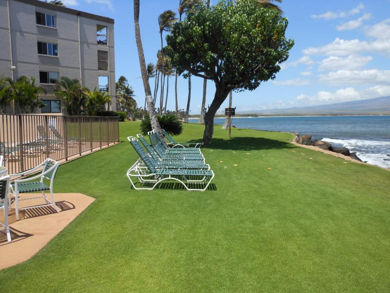 Front lawn of condo - Elegance At Its Best! - Maalaea - rentals