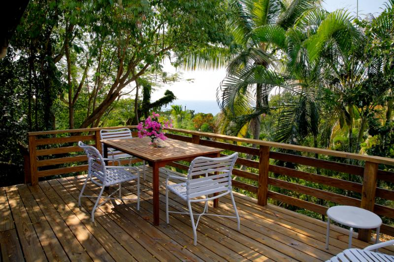 Ginger Thomas Deck - Northside Valley Eco-Friendly Villa - Saint Croix - rentals