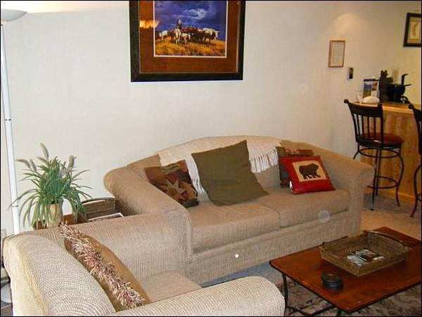 Spacious Living Room - Charming Vacation Condo - Great for a Small Family (1294) - Crested Butte - rentals