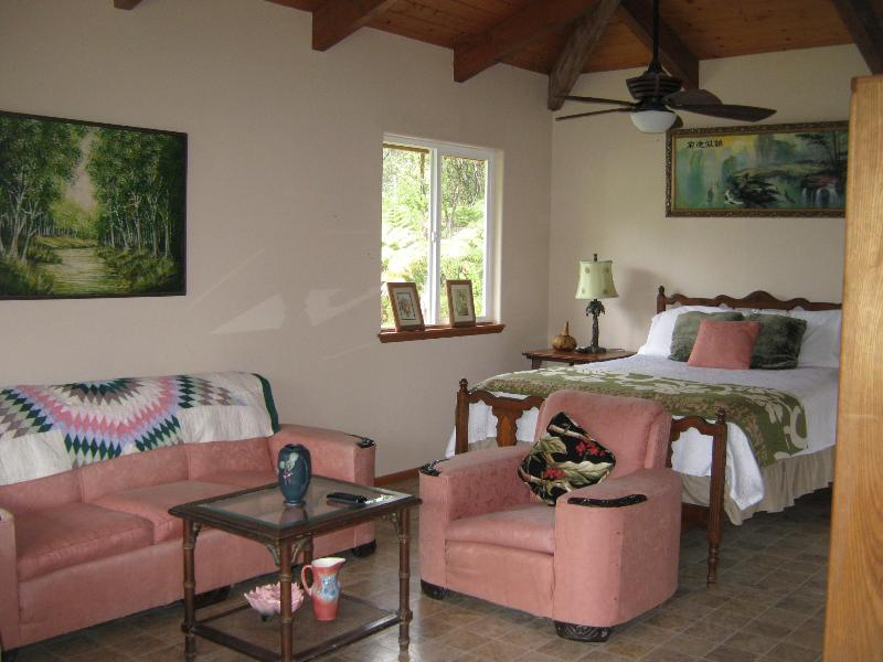 sitting area - Volcano Bamboo View Cottage only $105.00 - Volcano - rentals