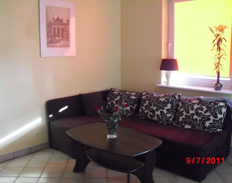 "Living room with sofa for 2 - Apartment  ""6"" - Gdansk - rentals"