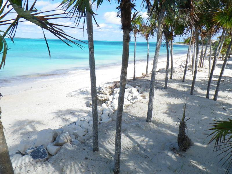 Shoreline at Conch Cottage - Conch Cottage - A beachfront home on Whitby Beach - North Caicos - rentals