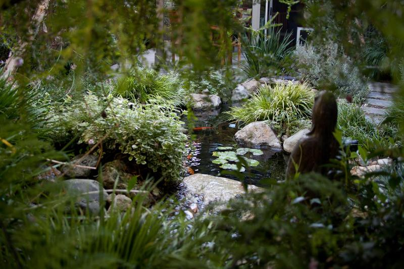 Koi Pond - Zen Cottage in Santa Monica - Santa Monica - rentals