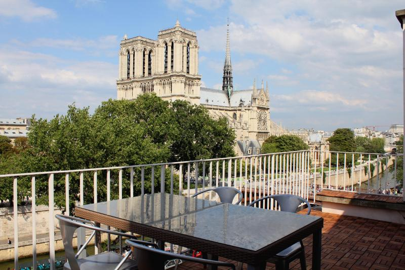 The amazing view from the terrace - 2BR on the Seine with breathtaking views - 5th Arrondissement Panthéon - rentals