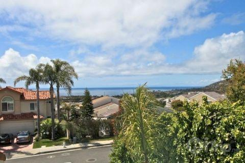 Ocean View - Dana Point Tri-Level Home - Dana Point - rentals