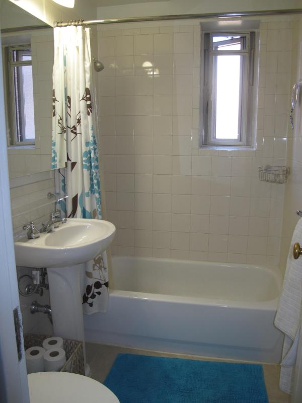 Bathroom - HUGE EAST VILLAGE APT-ELEVATOR/CRIB - New York City - rentals