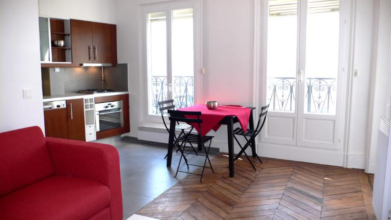 A living room with an american kitchen and a balcony all around the apartment. - 291 One bedroom Balcony  Paris Latin quarter district - Paris - rentals