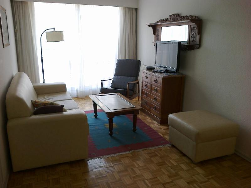 comfortable ligthful living room - 1 bedroom apart in Montevideo centre, Uruguay - Montevideo - rentals