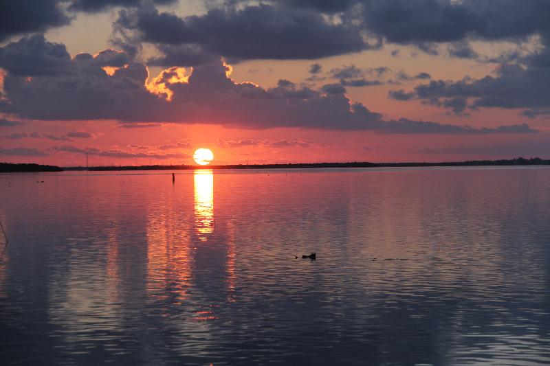 The Beginning of Another Beautiful Day in Paradise - Open Water is Only 42 Feet From Your  Front Door ! - Ramrod Key - rentals