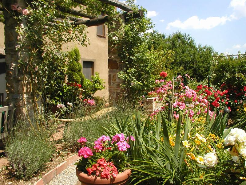 Part of Villa Rose Garden - Il Rifugio B&B and Cottage - Lucca - rentals