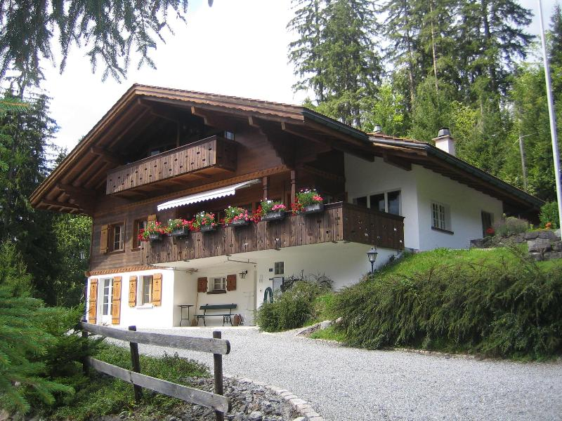 Chalet Ave in the Summer 1 - Chalet Ave, 2 flats (sleeps 9 and 4 persons) - Grindelwald - rentals