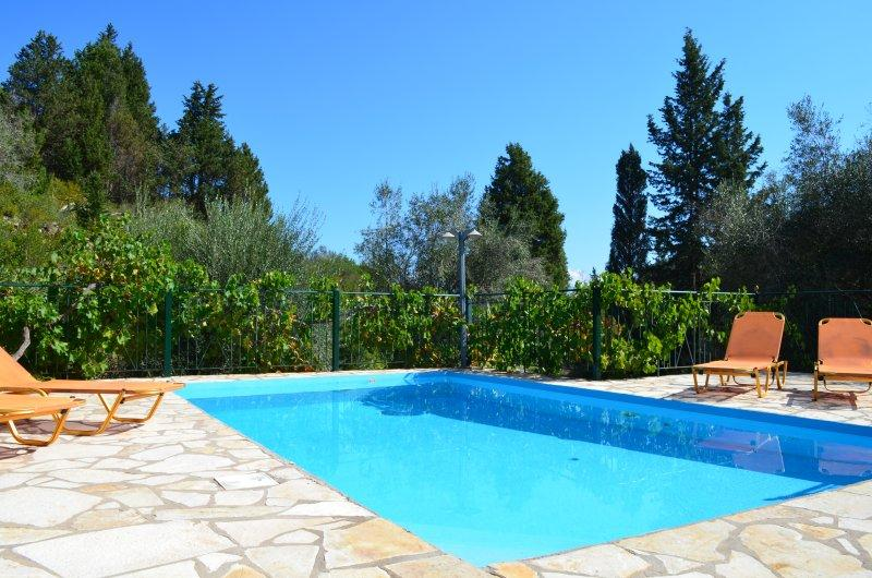 2 bedroom Villa with private pool in Loggos Paxos - Image 1 - Paxos - rentals