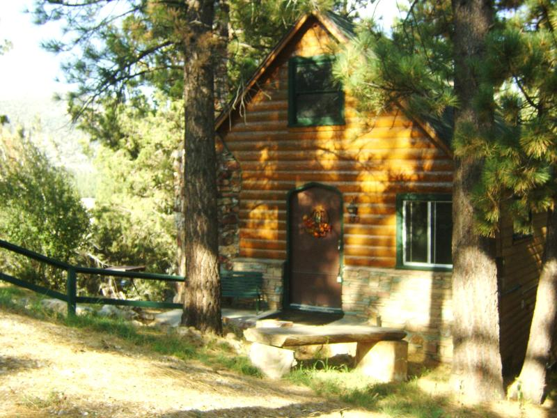 Cabin sits on a triple large lot, for added privacy. - ~Storybook Cabin +*HOT TUB,Fireplace,HDTV,Netflix~ - Big Bear Lake - rentals