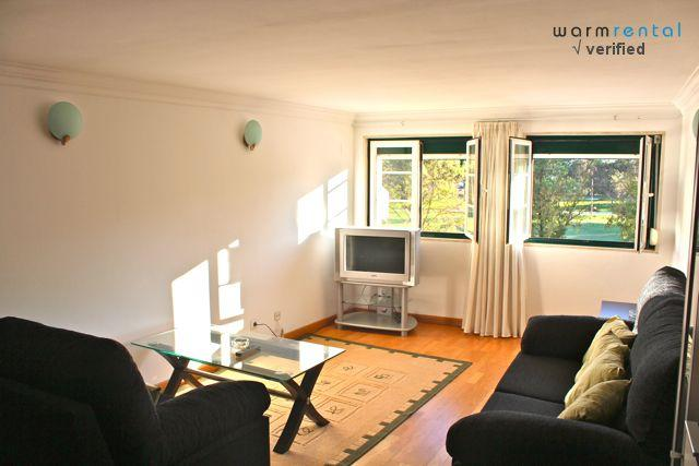 Living Room  - Mastic Apartment - Lisbon - rentals