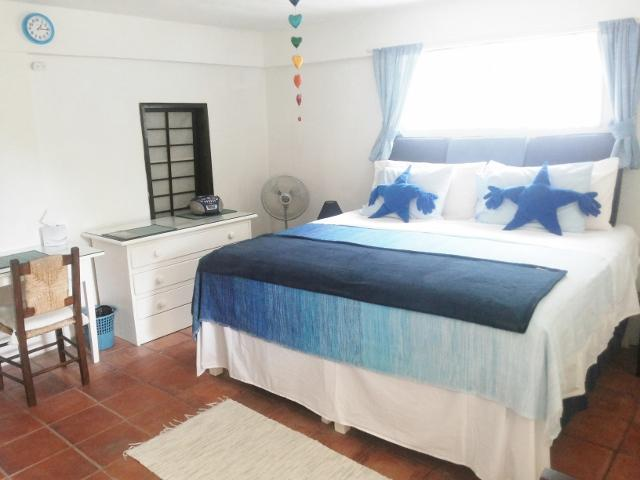 EcoFriendly Organic B&B/Self-catering Palmetto Apartment at the Chi Centre, near the Beach! - Image 1 - Bridgetown - rentals