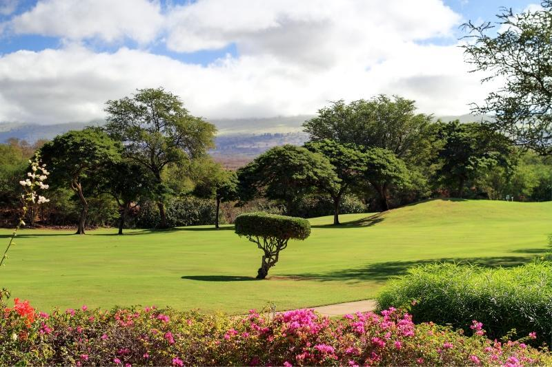 Your View from your Private Lanai - 2 Bedroom with Amazing Golf Course & Mountain View - Wailea - rentals
