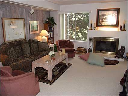 Living Room with Wood Burning Fireplace - Great Value Condo - Convenient Location (2178) - Aspen - rentals