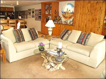 Living Room - Downtown Aspen - Views of Town and Slopes (2635) - Aspen - rentals