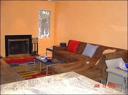 Living Room with Fireplace - Upscale Contemporary Remodel - South Beach Style (2644) - Aspen - rentals