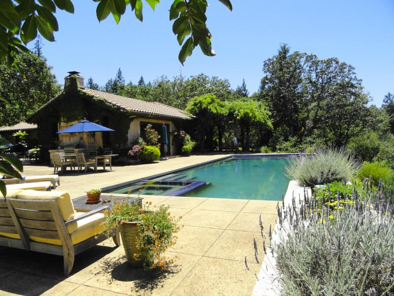 Large 50 foot infinity edge swimming pool and built in hot tub spa - Secluded Vineyard Estate Yet Close to Plaza - Healdsburg - rentals