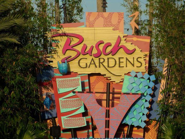 Busch Gardens, USF, Convention Center and Golf - Image 1 - Tampa - rentals