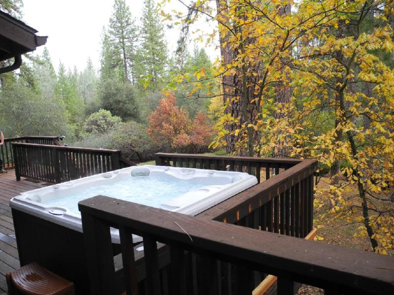 A spa with a view - Knarly Oaks Midpines Manor with spa on 2.5 acres - Yosemite National Park - rentals