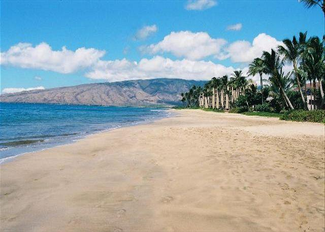 Kihei Kai Located On Sugar Beach - Kihei Kai #23 Ocean View! Condo is only 72 Steps To Sugar Beach. Great Rates! - Kihei - rentals