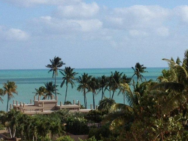 View of beach from terrace - Newly Renovated 2BR2BA Luxury Apt-Paradise Found - Key Biscayne - rentals