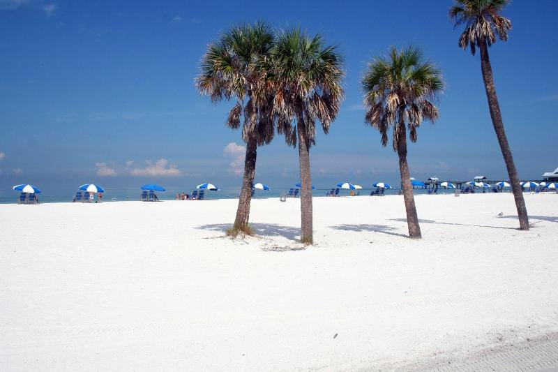 Clearwater Beach - 4 sleeps Condo in Clearwater, Florida - Clearwater - rentals