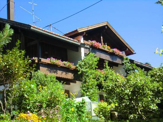 Vacation Apartment in Bad Hindelang - 377 sqft, allergy-friendly, quiet, central (# 3551) #3551 - Vacation Apartment in Bad Hindelang - 377 sqft, allergy-friendly, quiet, central (# 3551) - Obermaiselstein - rentals