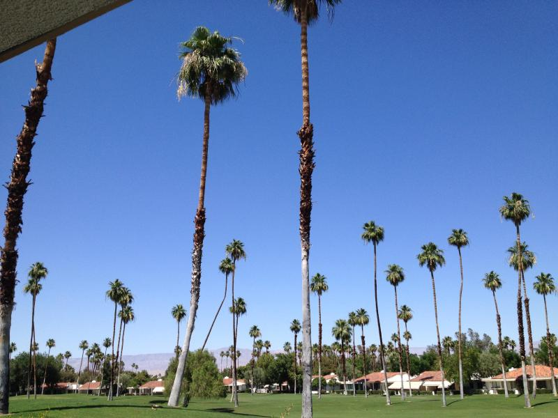 View of golf course from back patio - Comfortable and Convenient Rancho Mirage Condo - Rancho Mirage - rentals