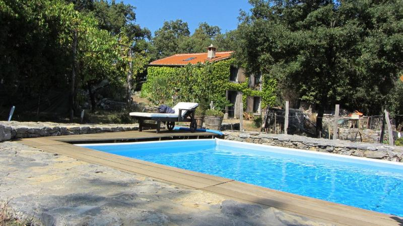House view with Swimming pool - Ricky's world with swimming pool in Lerici/5Terre - Cinque Terre - rentals